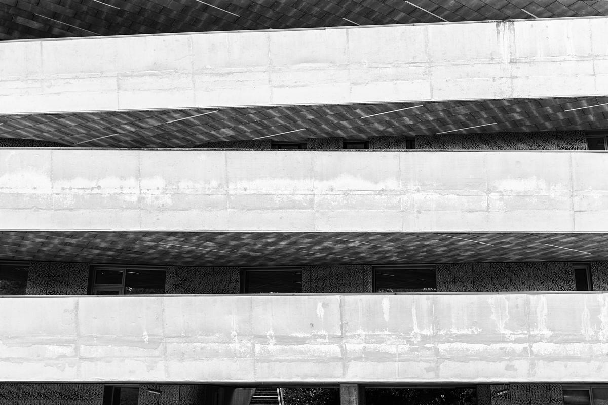 basque6web.jpg