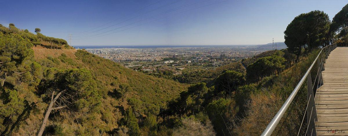 Desde Collserola 2 ( Barcelona ).jpg