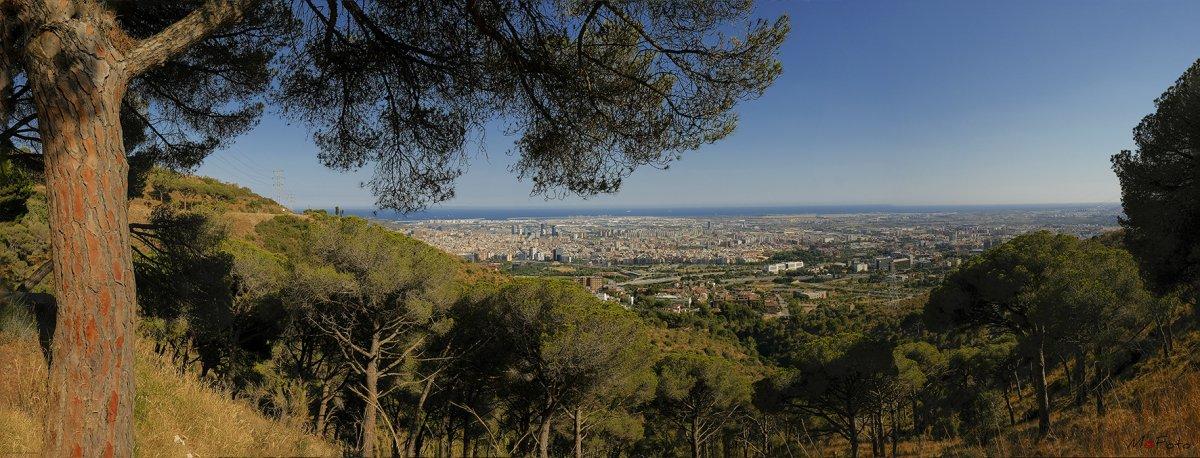 Desde Collserola ( Barcelona ).jpg