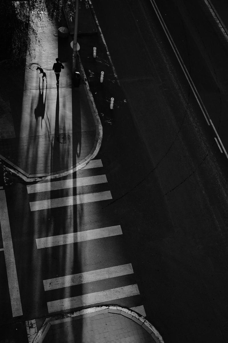 Entre las sombras - Fujistas.jpg