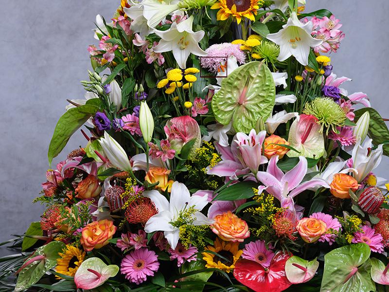 Isla de flores con la Fuji GFX 100 + GF 120mm f/4 Macro.