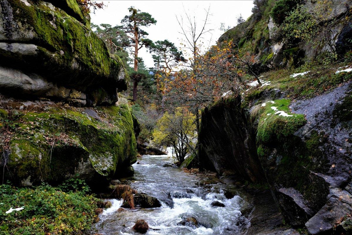 Piedras Agua Árboles 2 Otoño 2019.jpg